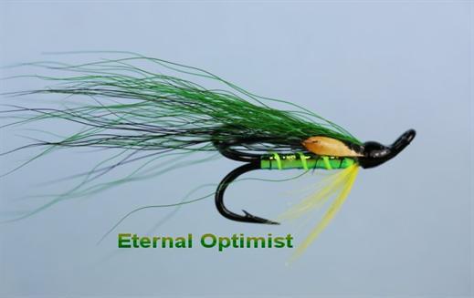 Eternal Optimist