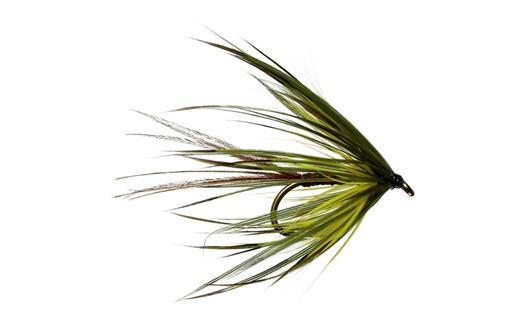 Green Mayfly