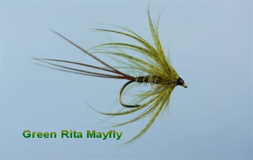 Green Rita Mayfly