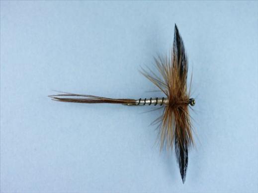Spent Brown Mayfly