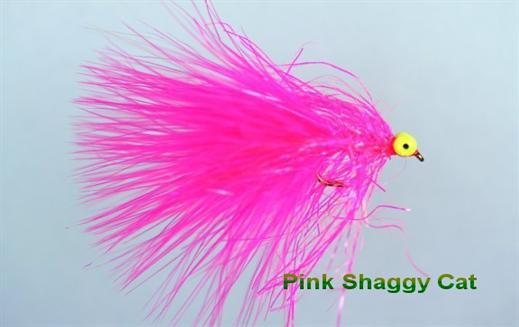 Pink Shaggy Cat