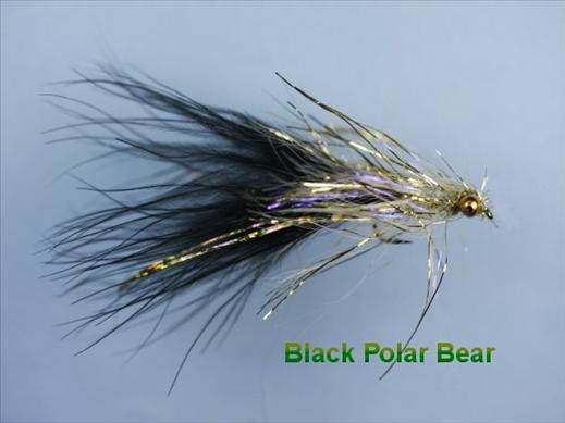UV Polar Bear Black
