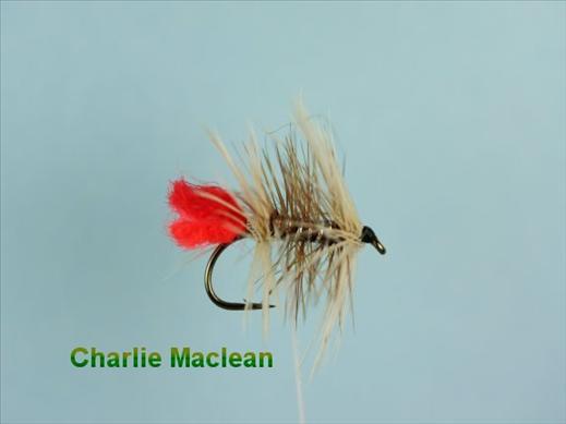 Charlie Maclean