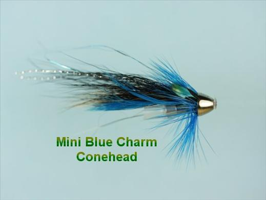 Mini Blue Charm