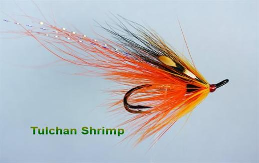 Tulchan Shrimp JC