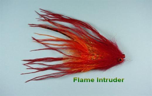 Flame Intruder