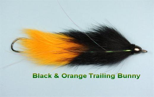 Black n Orange Trailing Bunny