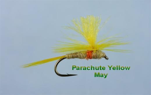 Parachute Yellow May