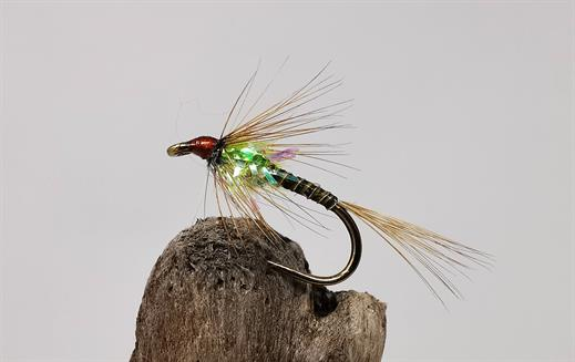 Lime Quill Cruncher