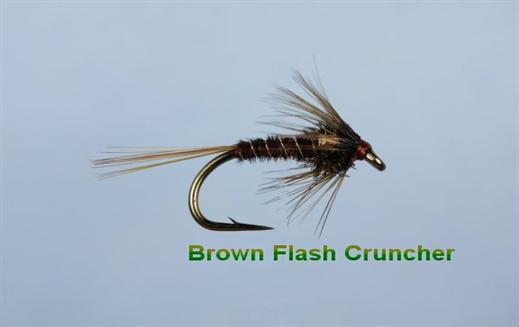 Cruncher Brown Flash