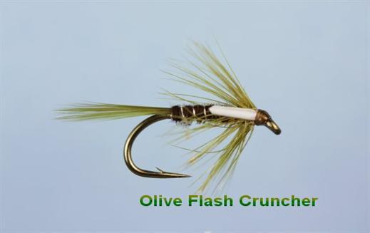 Cruncher Olive Flash