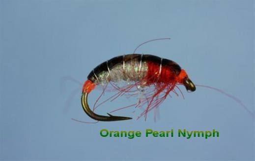 Orange Pearl Nymph