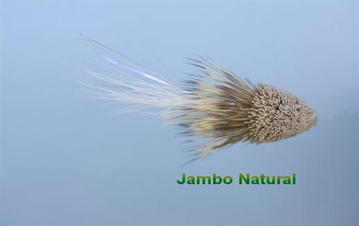 Jambo Wake Fly