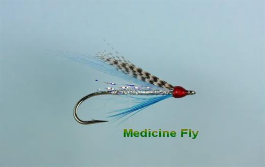 Medicine Fly