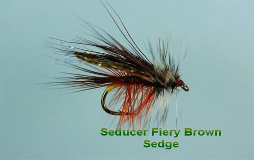 Seducer Fiery Brown Sedge