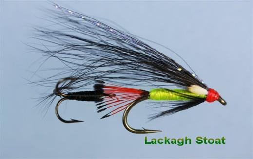 Lackagh Stoat JC Flying Treble