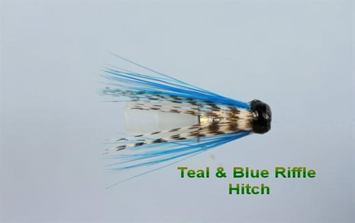 Teal and Blue Hitch