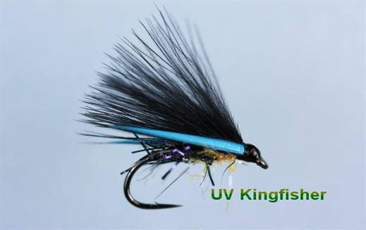 Kingfisher UV Cormorant