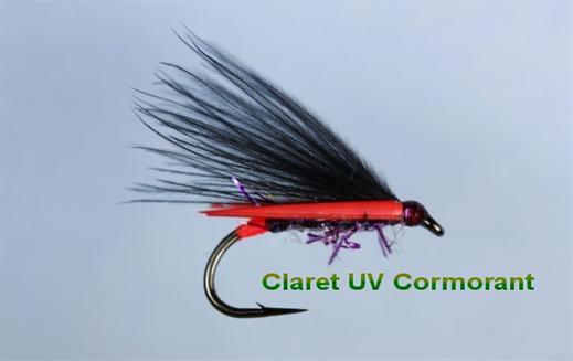 Claret UV Cormorant