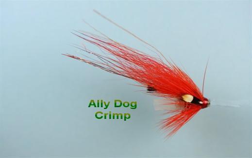Ally Dog Crimp JC
