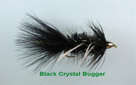Black Crystal Bugger