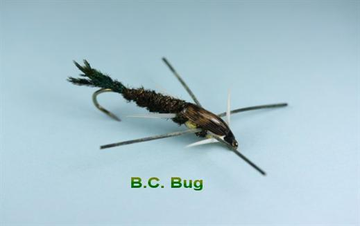 BC Bug