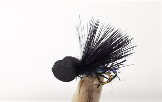 UV Black Cormorant Booby