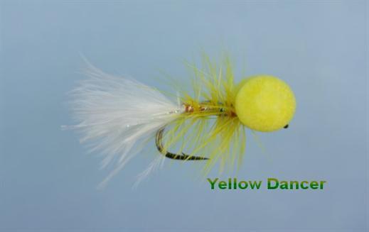 Yellow Dancer Booby