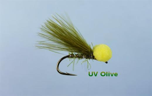 Olive UV Booby