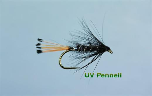 UV Pennell