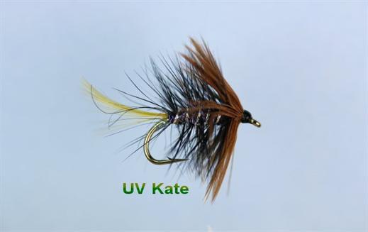 UV Kate