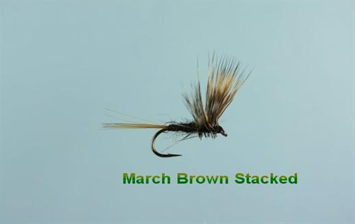 March Brown Stacked