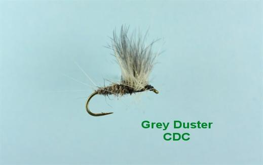 Grey Duster CDC