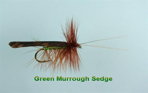 Green Peter Murrough Sedge