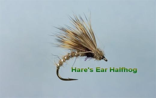 Hares Ear Halfhog