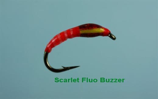 Scarlet Fluo Buzzer