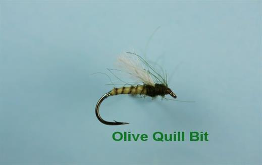 Olive Quill Bit