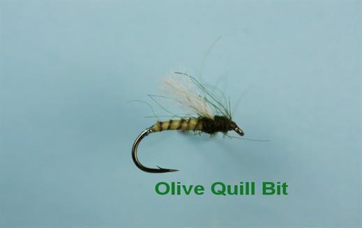 Olive Quill Bit