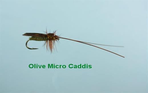 Olive Micro Caddis