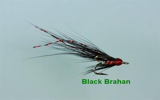Black Brahan Micro Treble
