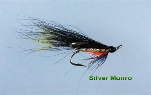 Silver Munro