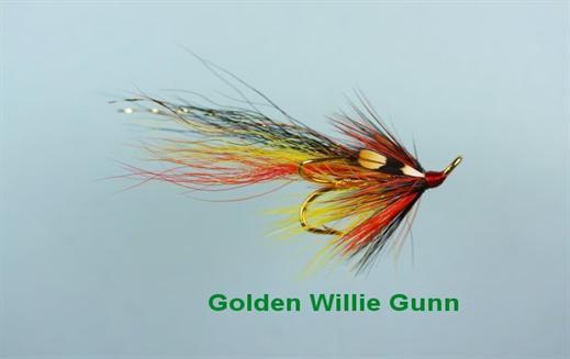 Golden Willie Gunn JC