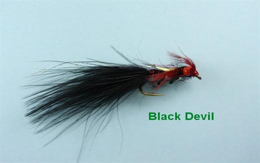 Black Little Devil