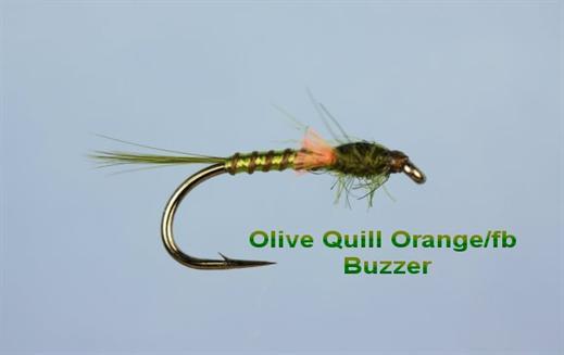 Olive Quill Orange FB Buzzer