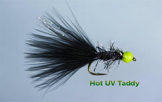 Hot UV Black Taddy