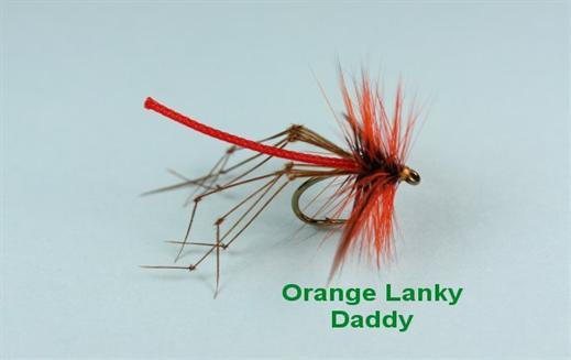 Orange Lanky Daddy