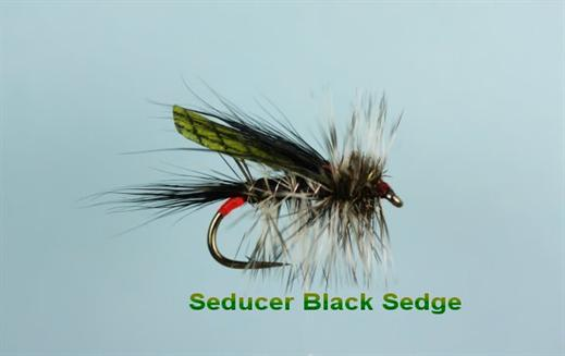 Black Seducer Sedge