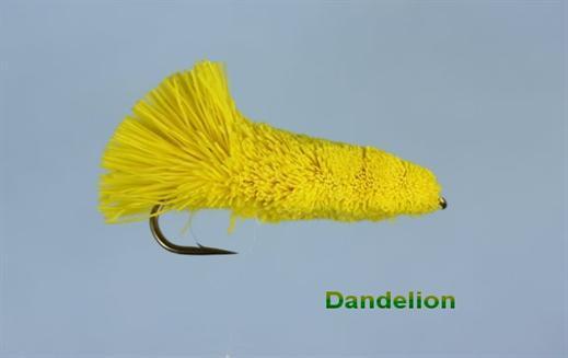 Dandelion Longshank