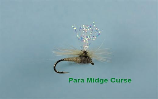 Para Midge Curse