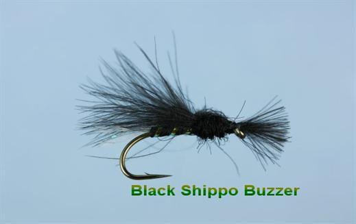 Black Shipmans CDC Buzzer